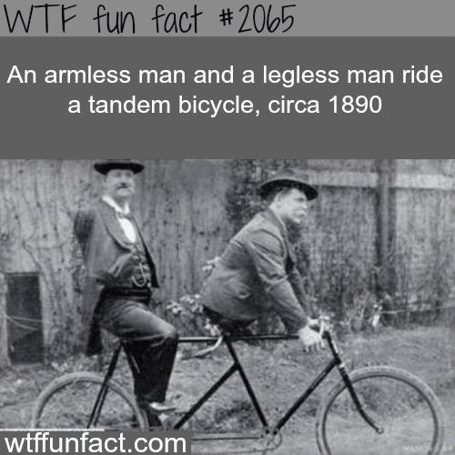 An armless man and a legless man -WTF fun facts