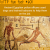 ancient egyptians police used baboons and dogs