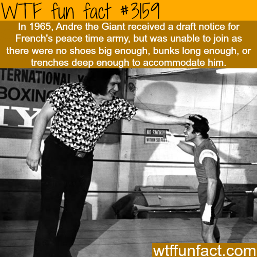 Andre The Giant in the army -  WTF fun facts