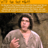 andre the giants fart wtf fun facts