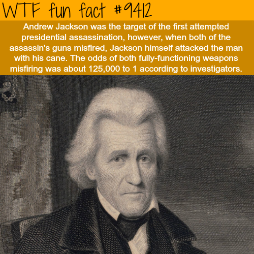 Andrew Jackson - WTF fun facts