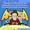 anhedonia wtf fun facts