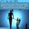 animal planet mermaids movies