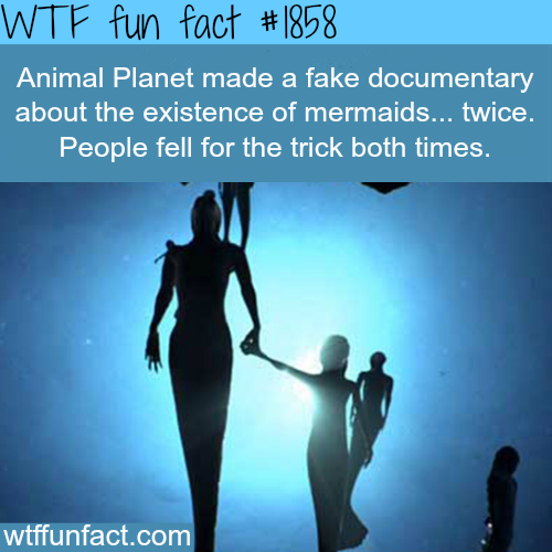 Animal Planet Mermaids movies -WTF fun facts