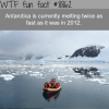 antarctica is melting twice as fast wtf fun