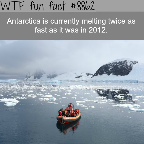 Antarctica is melting twice as fast…- WTF fun facts