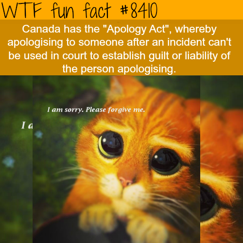 Apology Act - WTF fun facts