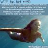 aquaman crystals wtf fun facts