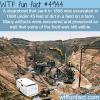 arabia steamboat museum wtf fun facts