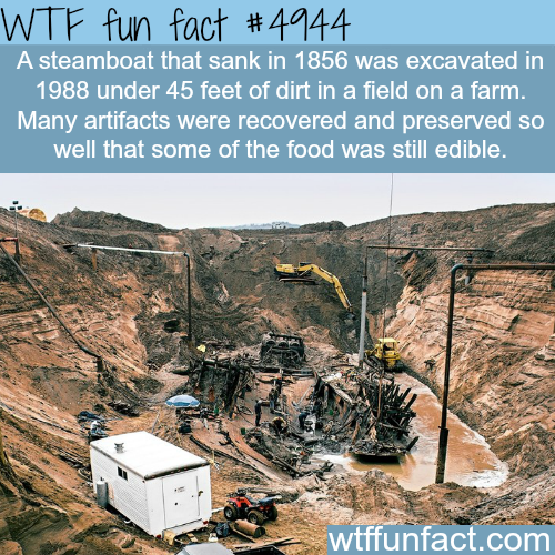 Arabia steamboat museum - WTF fun facts