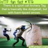 archery tag wtf fun facts