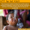 ardi rizal the toddler who smokes 40 cigarettes a day