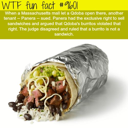 Are burritos sandwiches? - WTF fun fact