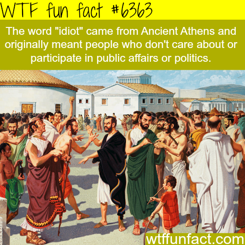 Are you an idiot? - WTF fun facts