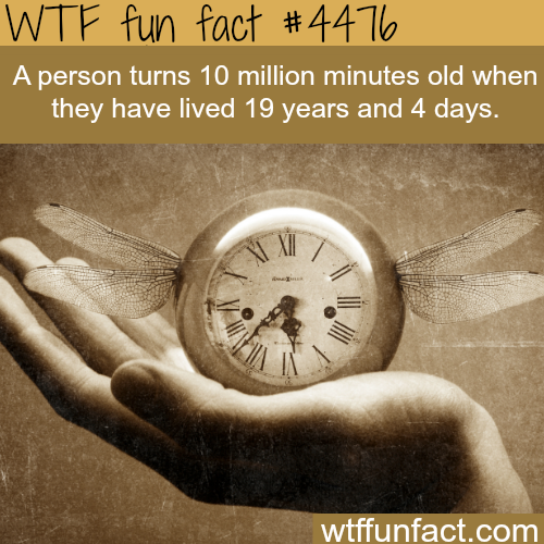 Are you younger or older than 10 million minute? -   WTF fun facts