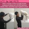 artist li hongbos paper sculpture wtf fun facts