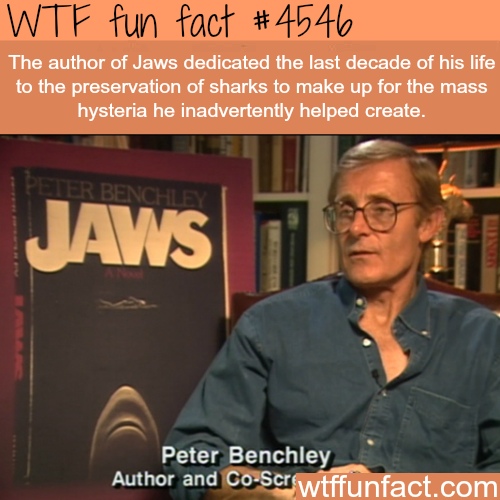 Author of Jaws dedicated his last years to shark preservation -   WTF fun facts