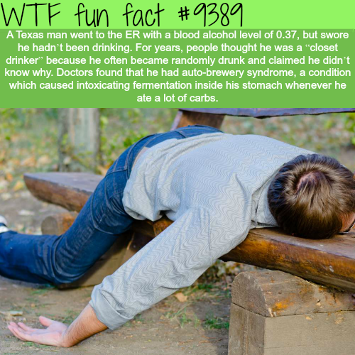 Auto-Brewery Syndrome - WTF fun facts