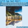 awesome photo of yosemite national park flipped