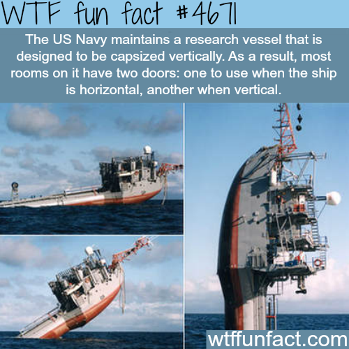 Awesome vertical ship - WTF fun facts
