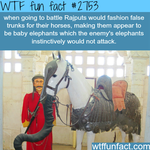 Awesome war tricks - WTF fun facts