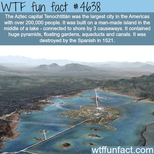 Aztec capital Tenochititlan - WTF fun facts