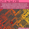 baader meinhof phenomenon wtf fun facts
