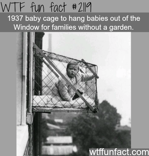 Baby cage to hang babies out of the window -WTF fun facts