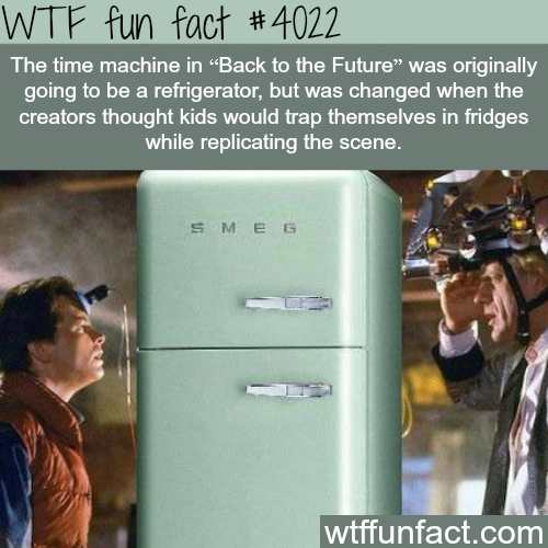 Back to the Future refrigerator time machine - WTF fun facts