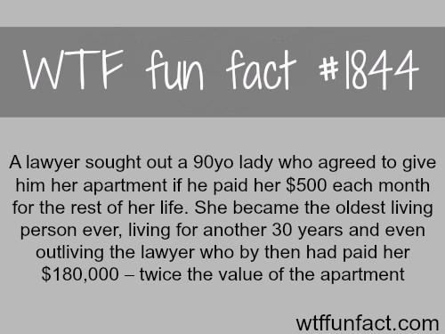 bad luck lawyer - WTF fun facts