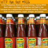 banana ketchup wtf fun facts