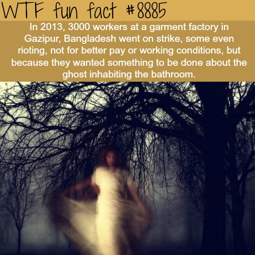 Bangladesh factory workers go on strike over a ghost - WTF fun facts