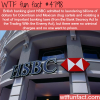 banking giants hsbc helped drug cartels to launder