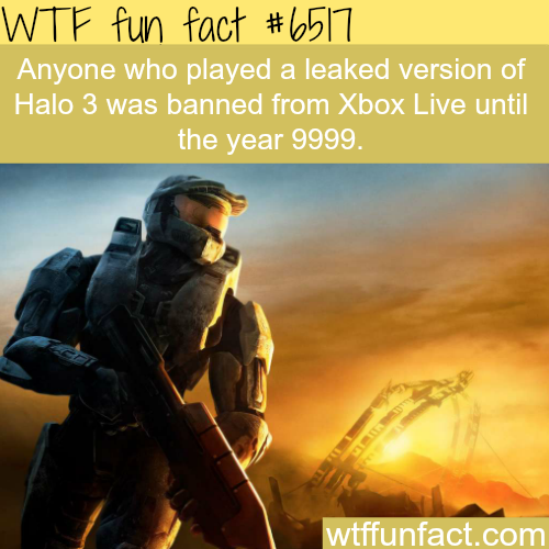 Banned until the year 9999 for playing a leaked version of Halo - WTF fun facts