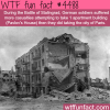 battle of stalingrad wtf fun facts