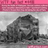 battle of stalingrad wtf fun facts