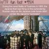 battle of tsushima wtf fun fact