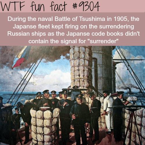 Battle of Tsushima - WTF fun fact