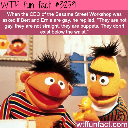 Bert and Ernie gay? -  WTF fun facts