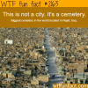 biggest cemetery in the world