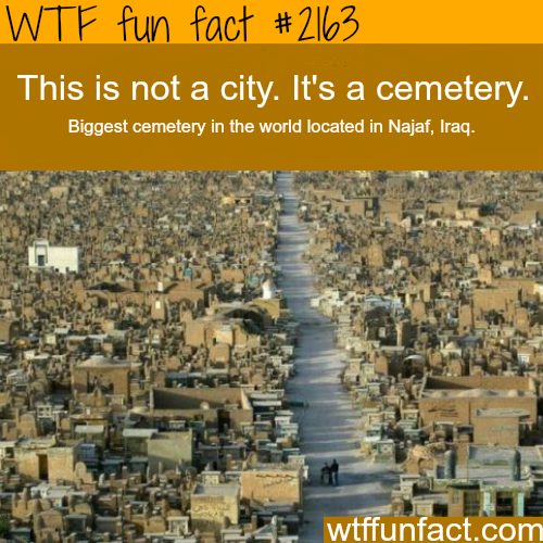 Biggest Cemetery in the world - WTF fun facts