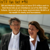 bill and melinda gates wtf fun fact