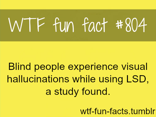 "FOR MORE OF ""wtf fun facts"" click HERE <—-"