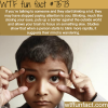 blinking during a conversation wtf fun facts