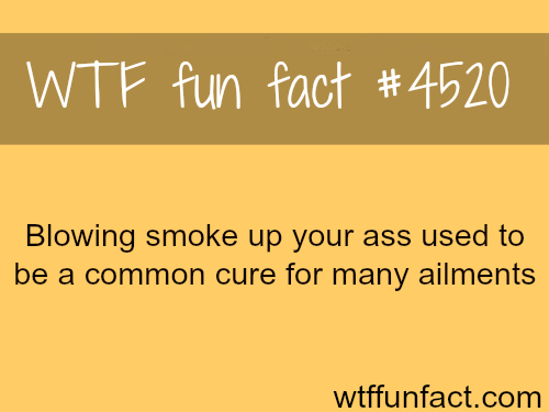 Blowing smoke up your ass -   WTF fun facts