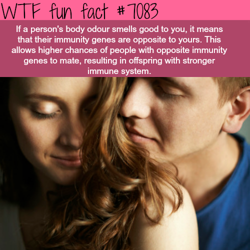 Body odor can say a lot about your genes - WTF fun facts