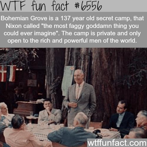 Bohemian Grove - WTF fun facts