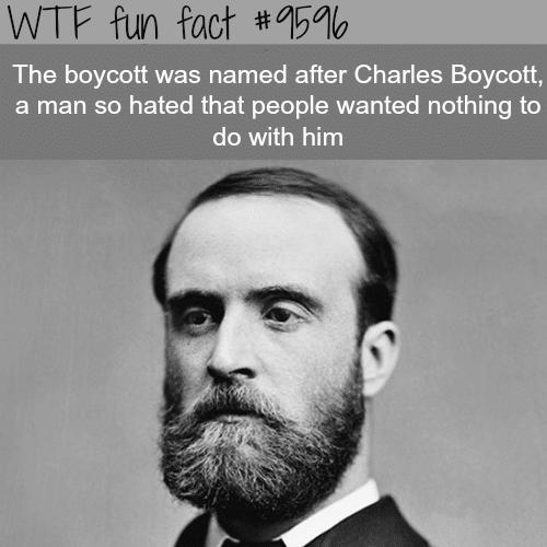 Boycott - WTF fun fact