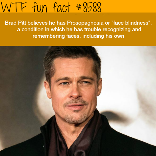 Brad Pitt can't remember faces