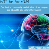 brain facts wtf fun facts